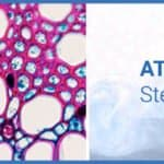 Your Guide to the ATF Bioreactor Sterilization Cycle